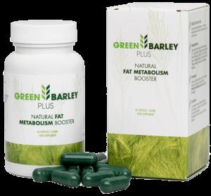 zielony jeczmien herbata